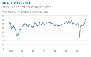IBI Activity Index